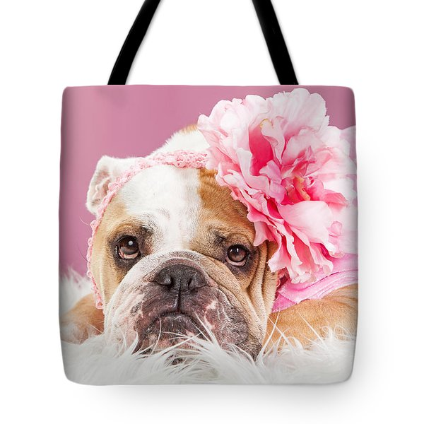Female Bulldog Wearing Pink Outfit And Flower Tote Bag