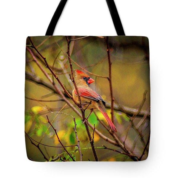 Female Cardinal #1 Tote Bag