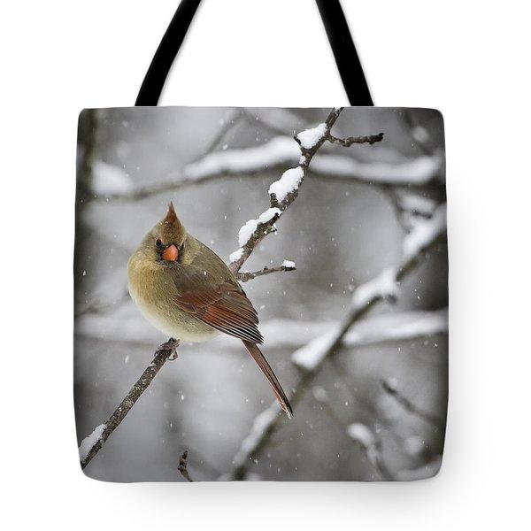 Female Cardinal In Snow Tote Bag