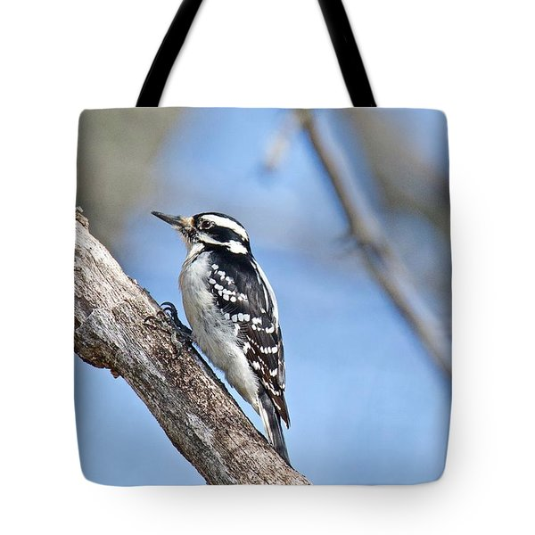 Tote Bag featuring the photograph Female Downey Woodpecker 1104  by Michael Peychich