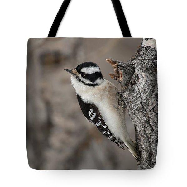 Female Downey Woodpecker Tote Bag