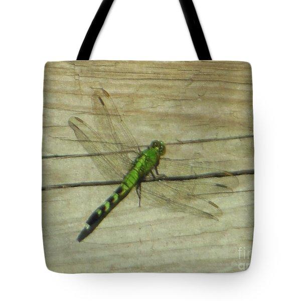 Female Eastern Pondhawk Dragonfly Tote Bag