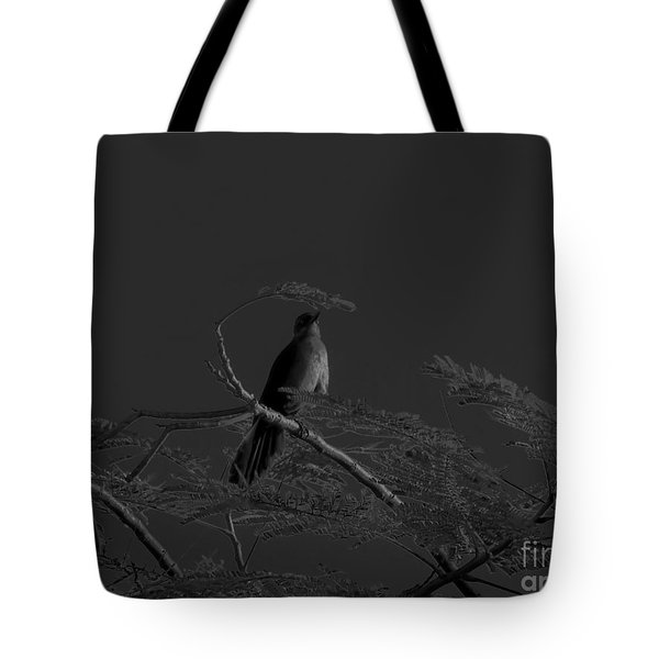 Female Grackle Tote Bag