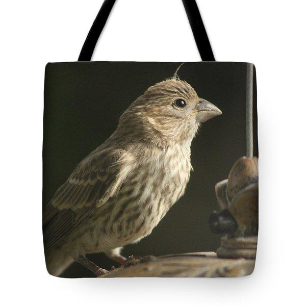 Female House Finch On Feeder Tote Bag