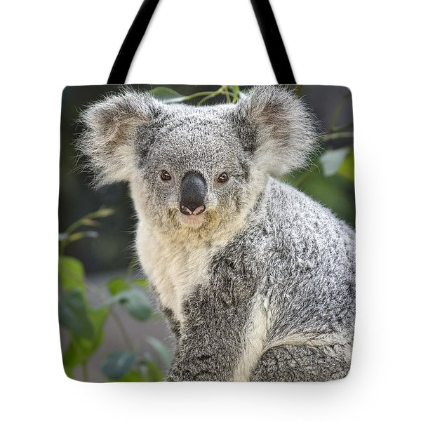 Female Koala Tote Bag by Jamie Pham