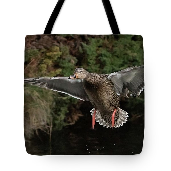 Female Mallard Tote Bag