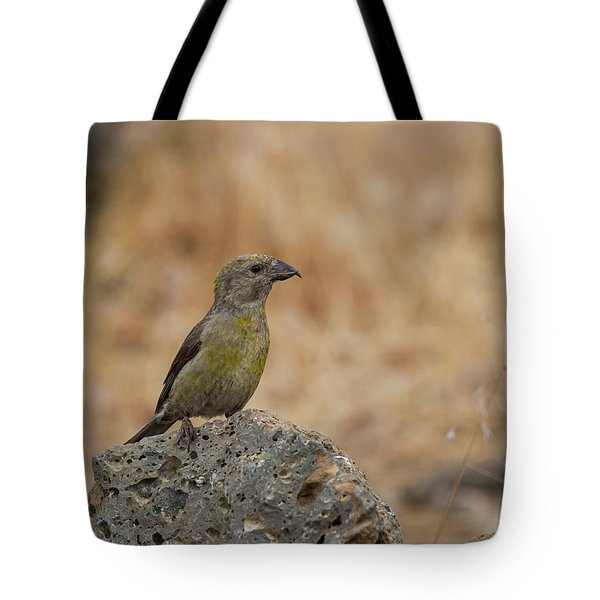 Female Red Crossbill Tote Bag by Doug Lloyd