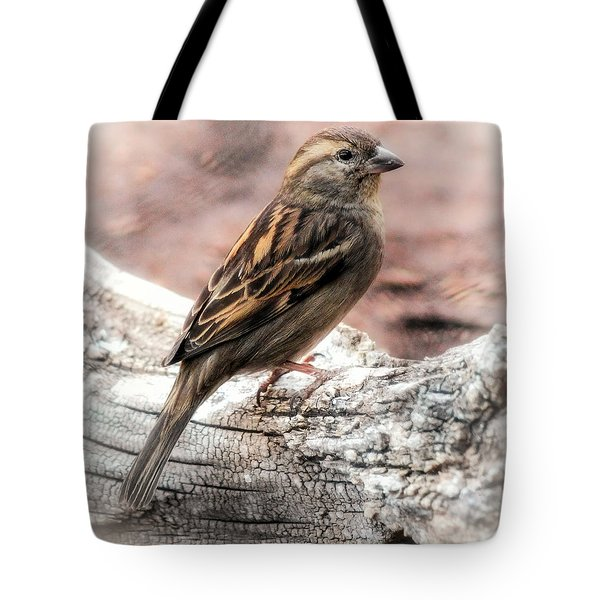 Female Sparrow Tote Bag