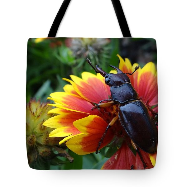 Female Stag Beetle Tote Bag