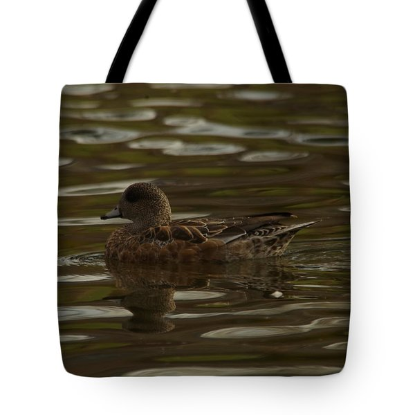 Tote Bag featuring the photograph Female Wigeon by Jeff Swan