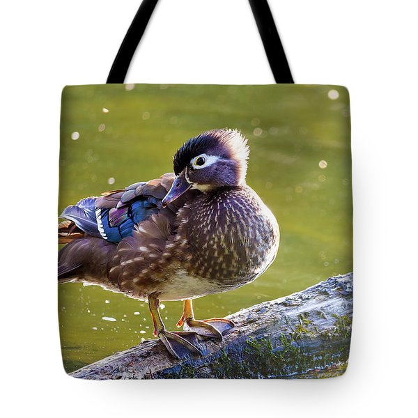 Female Wood Duck Tote Bag by David Gn