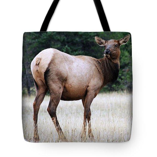 Feme Elk Tote Bag by Tiffany Vest