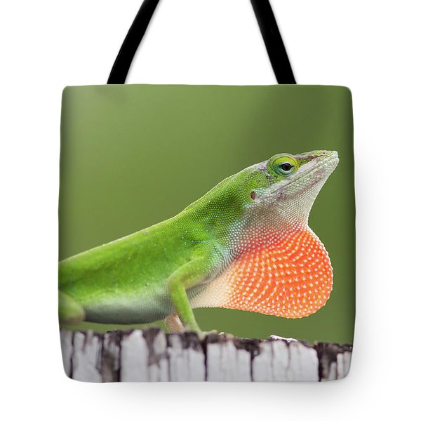 Fence Sitter Tote Bag