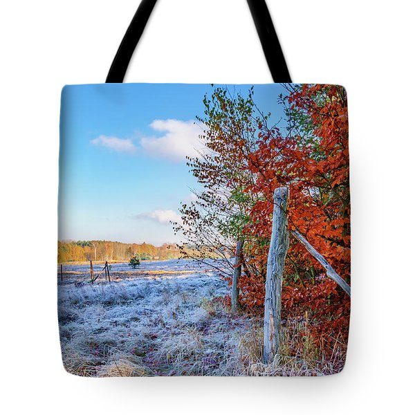 Tote Bag featuring the photograph Fenced Autumn by Dmytro Korol