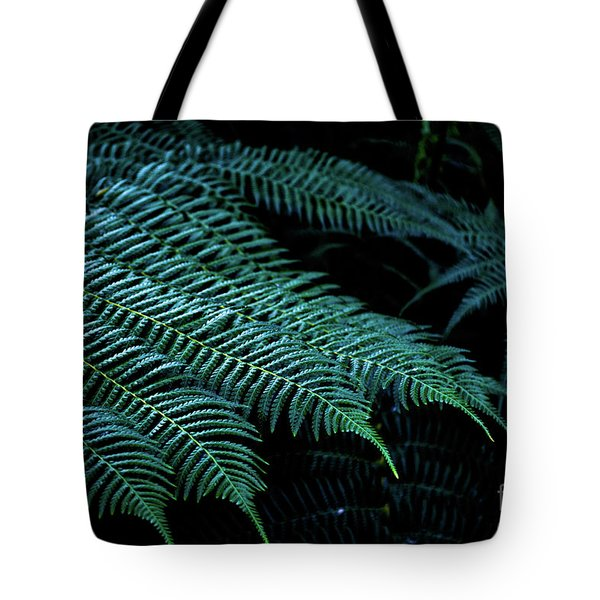 Patterns Of Nature 6 Tote Bag