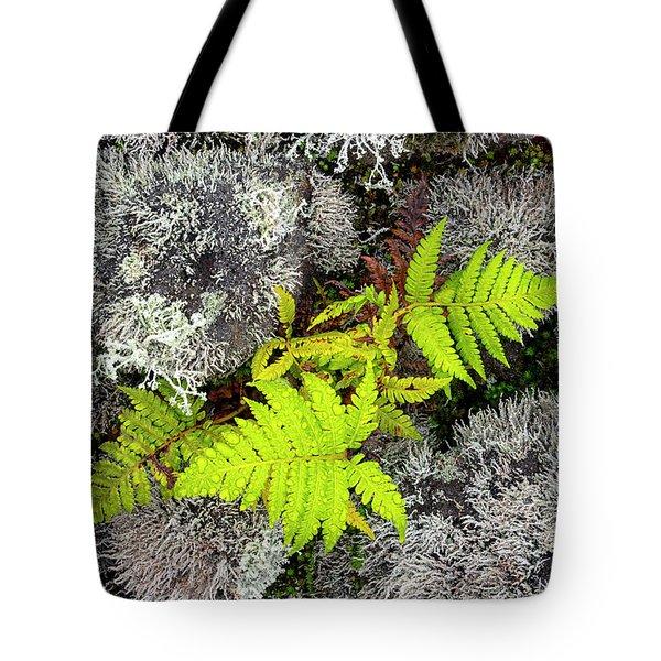 Fern And Lichen Tote Bag
