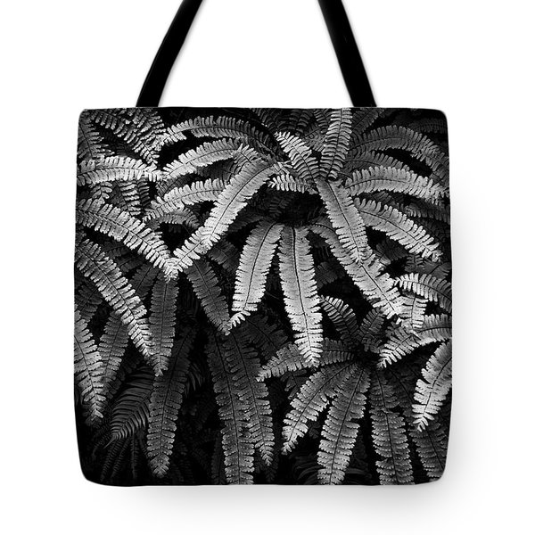 Fern And Shadow Tote Bag
