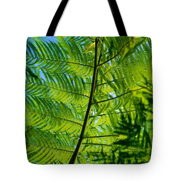 Fern Detail Tote Bag by Himani - Printscapes