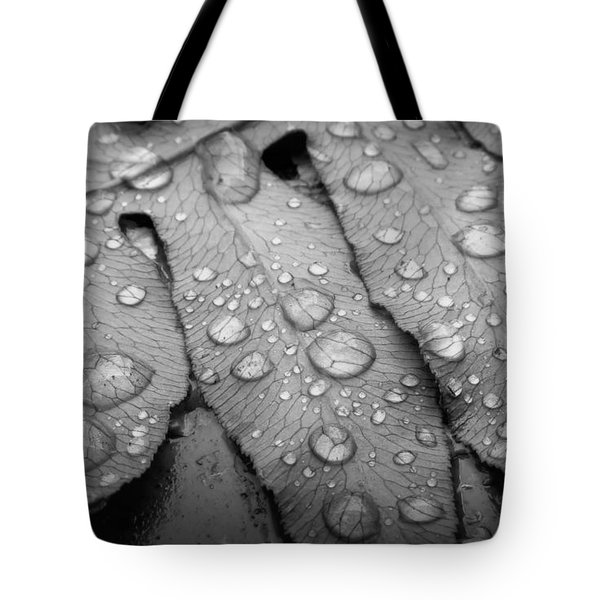 Fern Drops In Black And White Tote Bag
