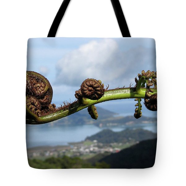 Fern Fiddlehead Tote Bag
