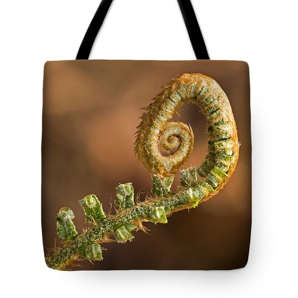 Fern Frond - 365-39 Tote Bag by Inge Riis McDonald