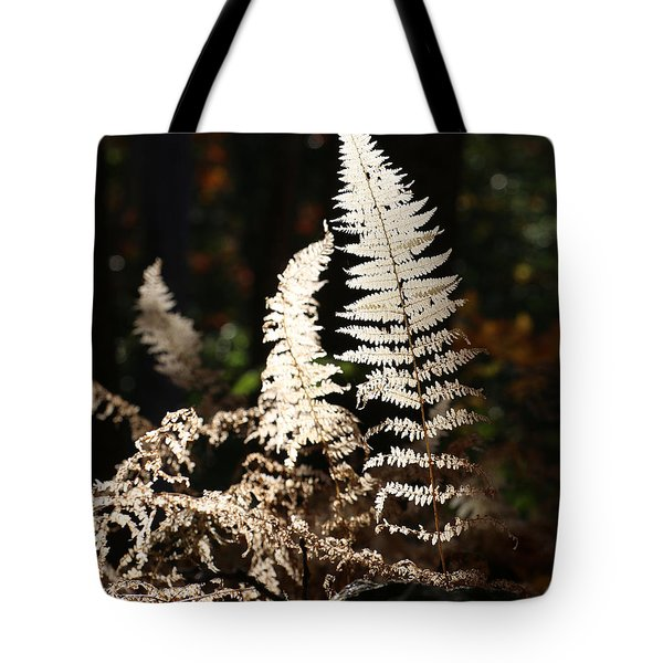 Tote Bag featuring the photograph Fern Glow 2 by William Selander