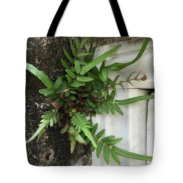 Tote Bag featuring the painting Fern by Kim Nelson