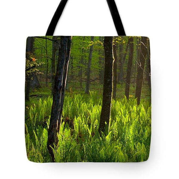 Fern Rise Tote Bag