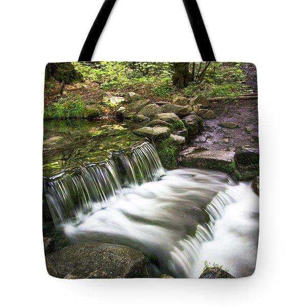 Fern Spring 4 Tote Bag