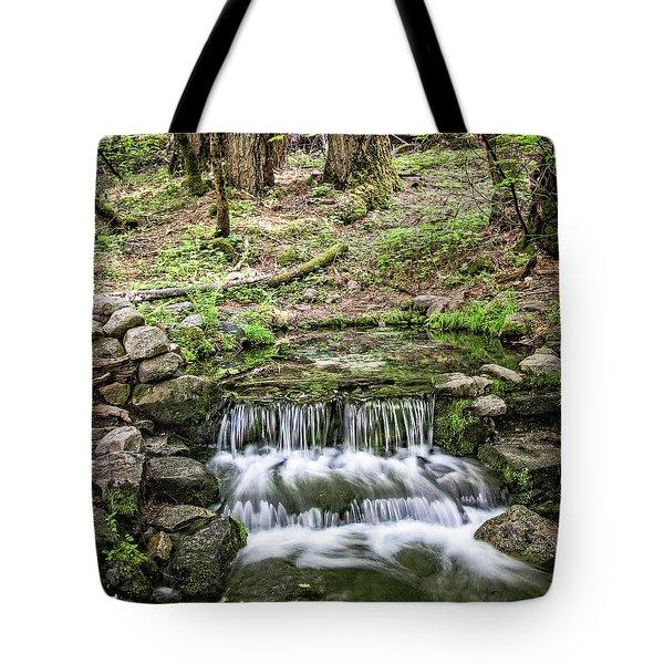 Fern Spring 5 Tote Bag