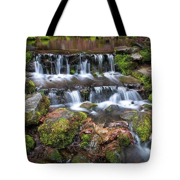 Fern Springs Tote Bag