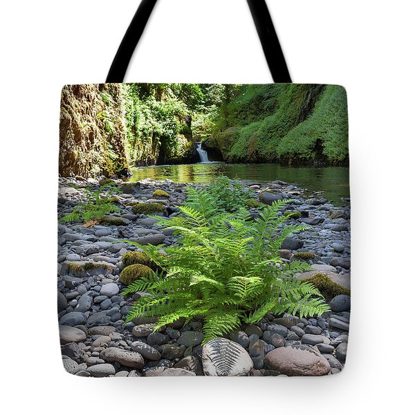 Ferns Along Banks Of Eagle Creek Tote Bag
