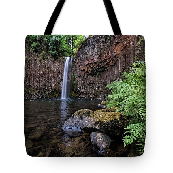 Ferns And Rocks By Abiqua Falls Tote Bag by David Gn