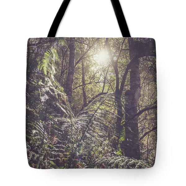 Ferns And Sunshine Tote Bag