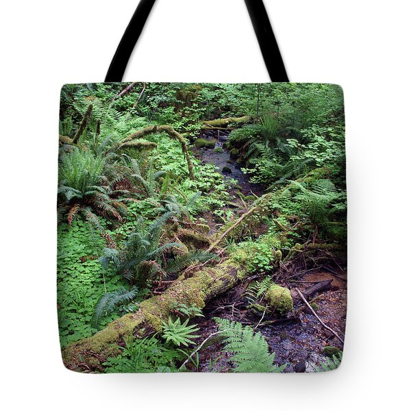 Tote Bag featuring the photograph Ferns Galore by Ben Upham III