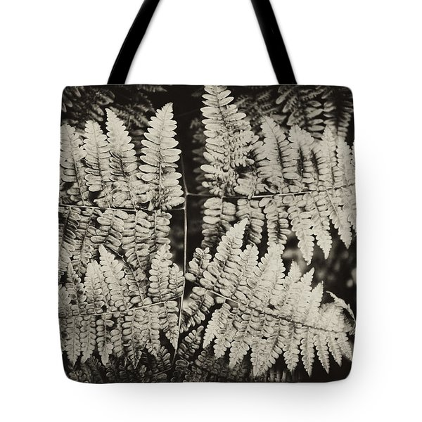 Tote Bag featuring the photograph Ferns by Hugh Smith
