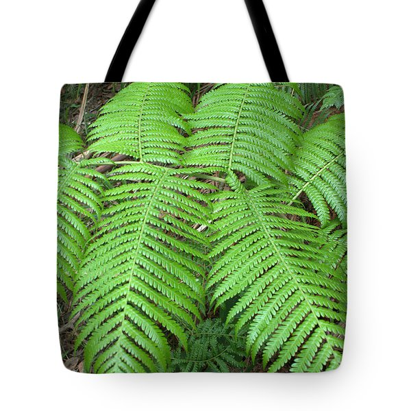Tote Bag featuring the photograph Ferns by Karen Nicholson