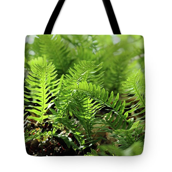 Ferns Of The Forest Floor Tote Bag