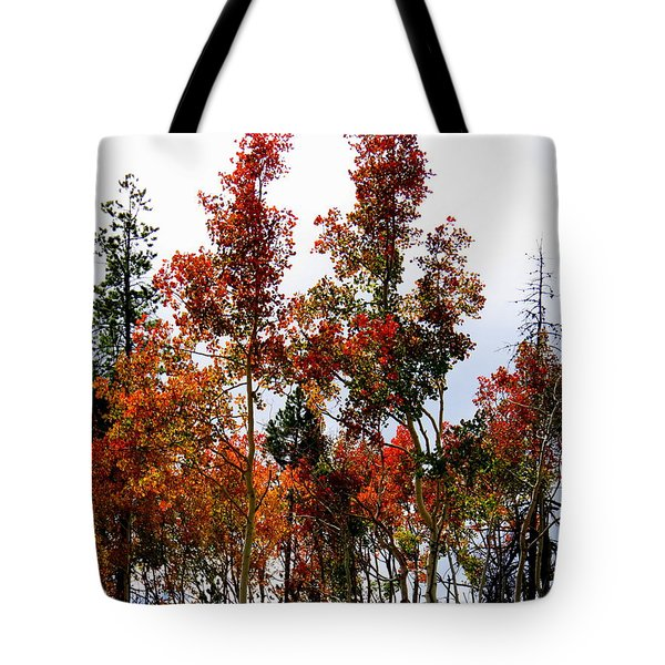 Festive Fall Tote Bag by Karen Shackles