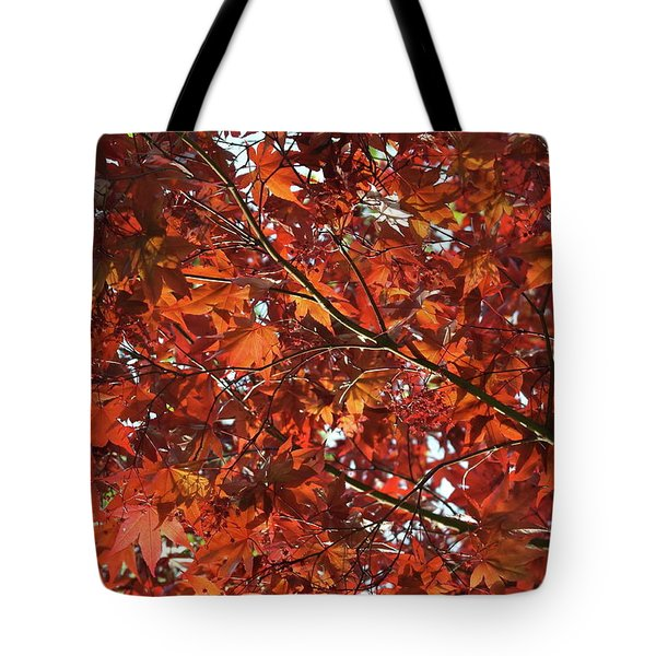 Tote Bag featuring the photograph Festive Japanese Maple by Michele Myers