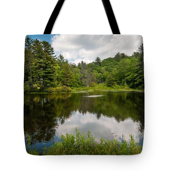 Fetch Tote Bag