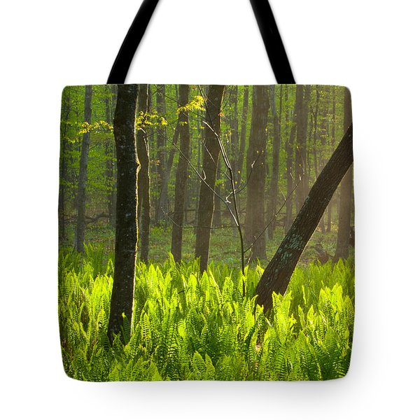 Fiddle Me This Tote Bag