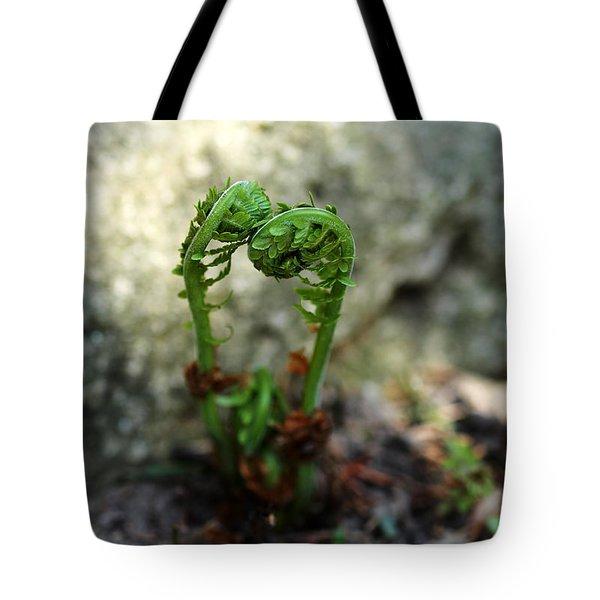 Fiddleheads Tote Bag