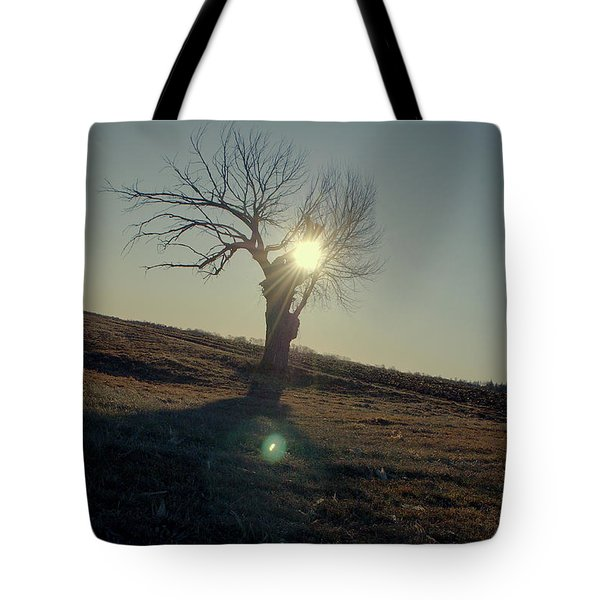Field And Tree Tote Bag