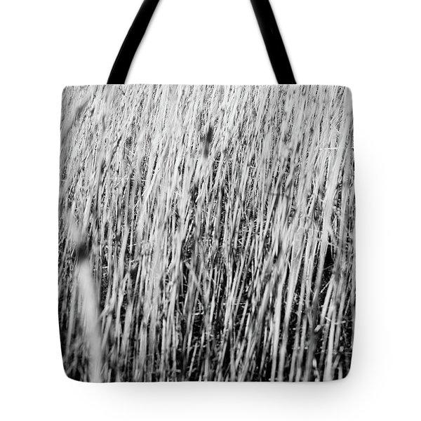 Field Grasses Tote Bag