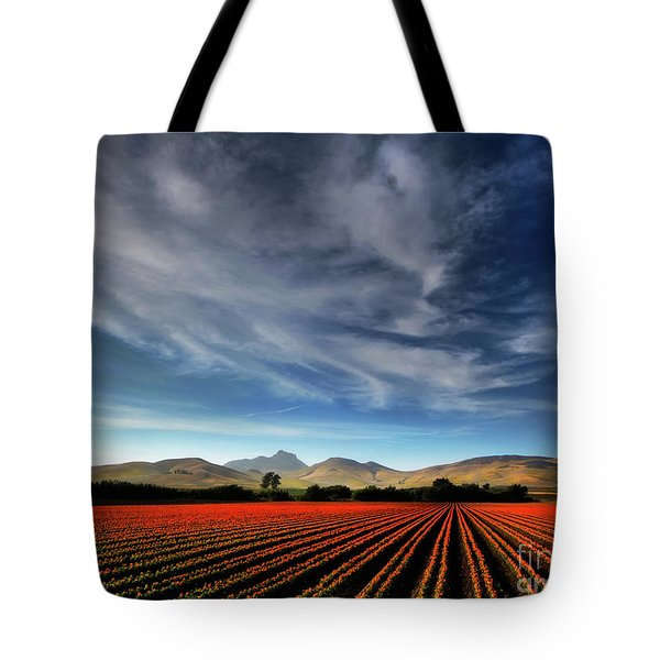 Field Of Color Tote Bag