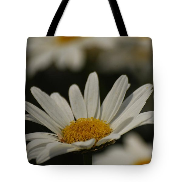 Tote Bag featuring the photograph Field Of Daisies by Ramona Whiteaker