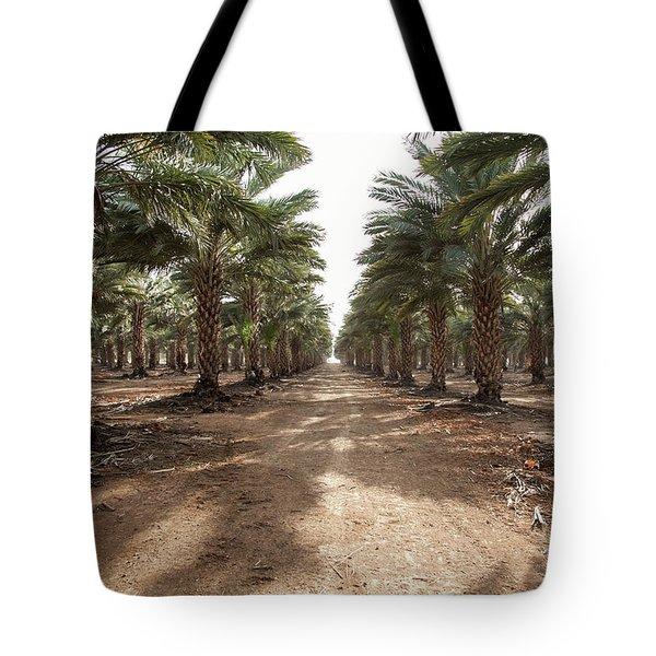 Date Grove #3 Tote Bag by Yoel Koskas