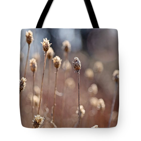 Field Of Dried Flowers In Earth Tones Tote Bag