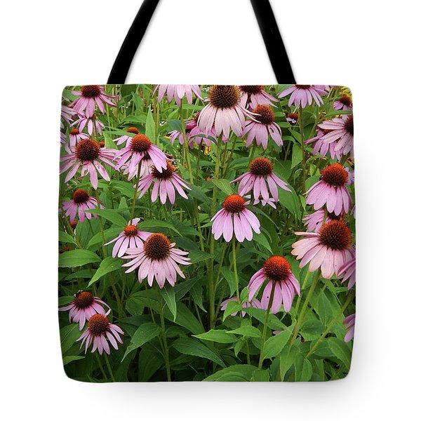 Field Of Echinacea Tote Bag